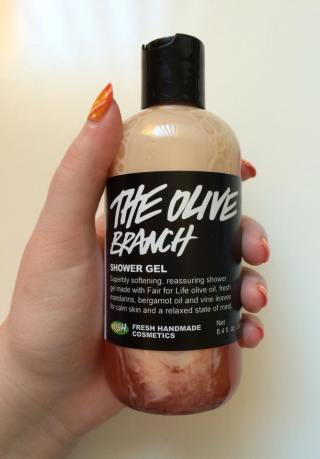 July Favorites 2015 Lush Olive Branch