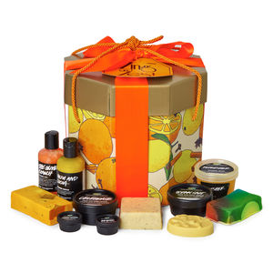 Lush Cosmetics Holiday Gifts Zing and Zest Christmas Present